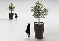 3d室内盆栽模型+贴图