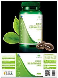 共轭亚油酸绿茶肉碱软胶囊标签设计 EPS