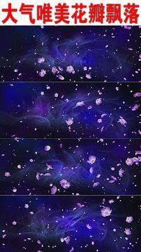 唯美花瓣飘落视频背景