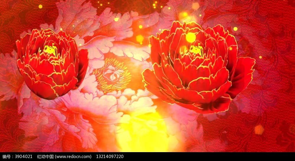 红红火火动态牡丹花视频背景