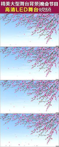 春暖花开桃花飘落视频