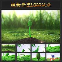 植物生长开花LOGO绽放