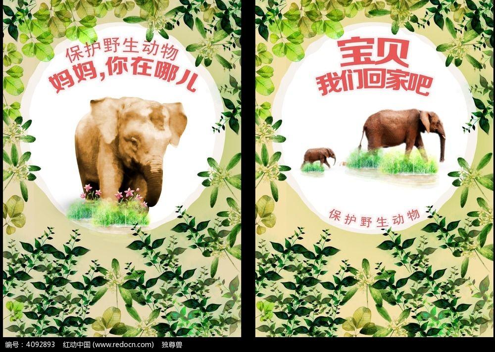 保护野生动物公益海报广告设计psd下载图片