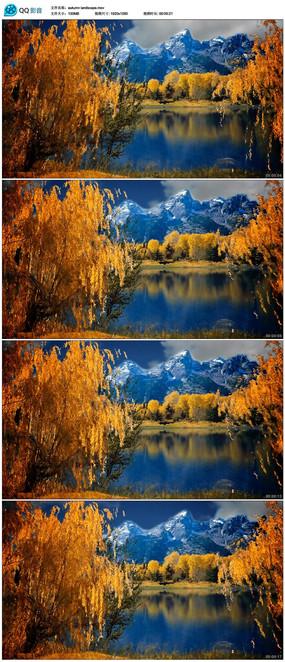 秋天湖畔风景视频