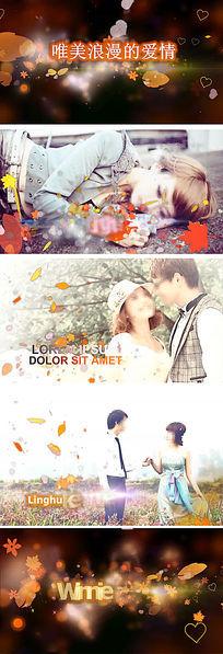 会声会影浪漫枫叶婚礼相册视频模板