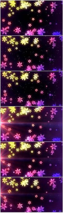 彩色花瓣飘落实拍视频素材