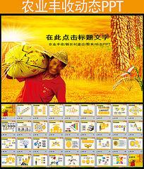玉米种子动态PPT模板