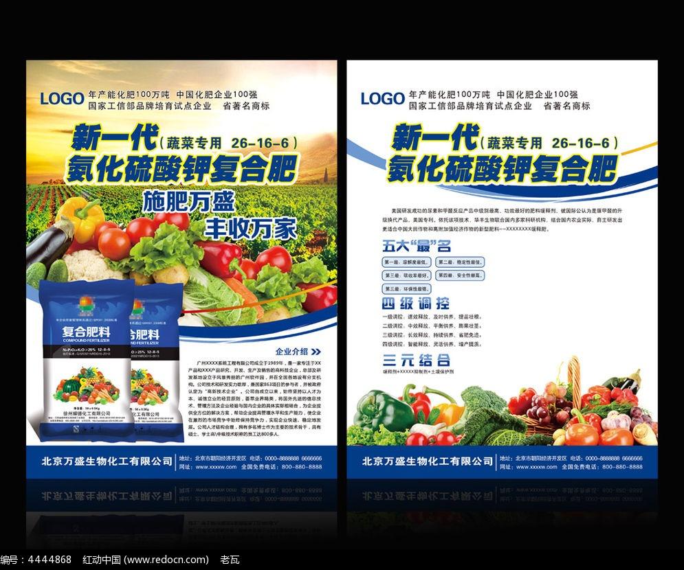蔬菜海報  有機蔬菜 綠色蔬菜