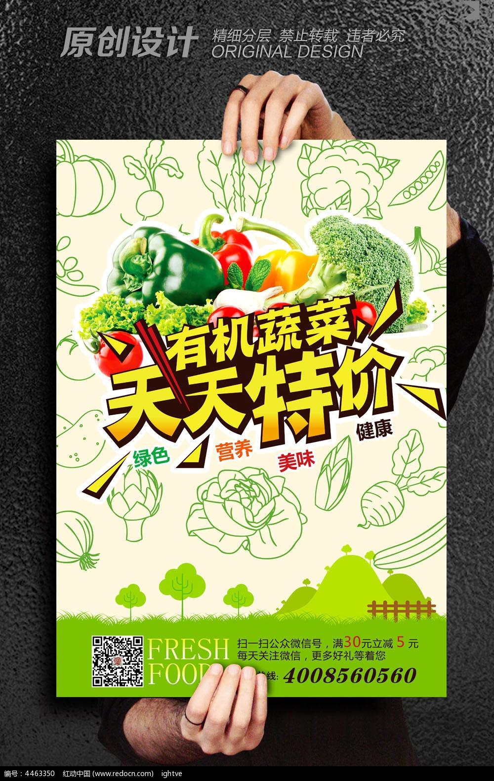 8款 简约创意有机蔬菜海报设计psd下载