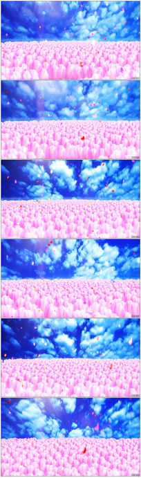 蓝天白云鲜花动态视频