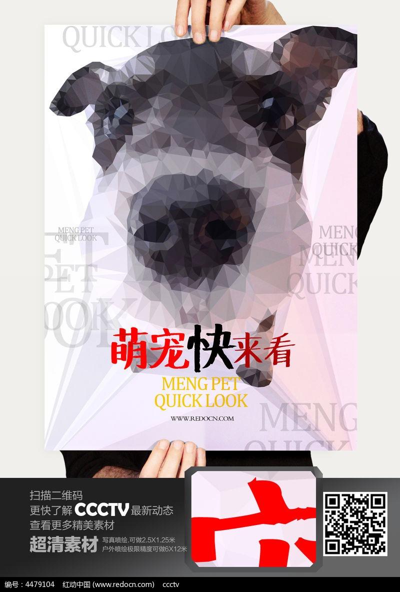 创意晶格化宠物店海报设计