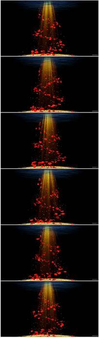 花瓣飘落灯光光束视频