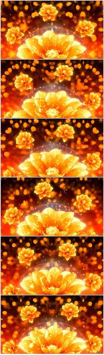 金色牡丹LED视频背景
