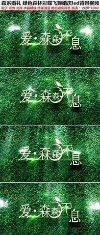 彩蝶飞舞绿色森林背景婚礼LED视频素材