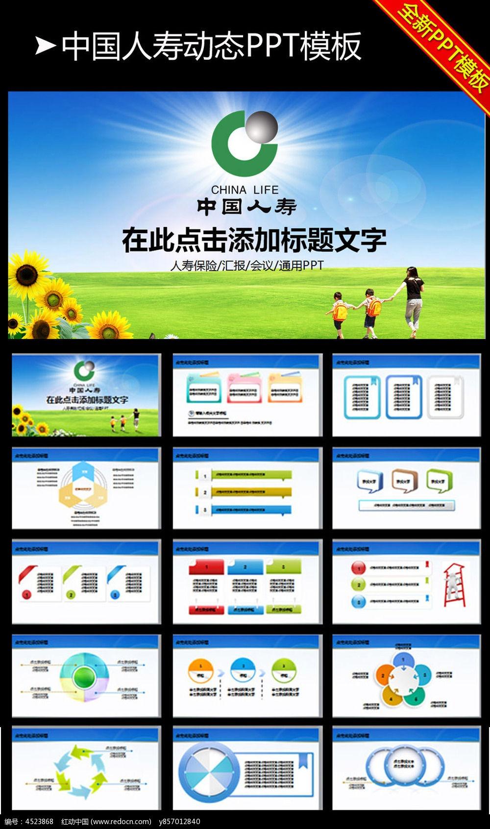 中国人寿人保寿险2015年静态ppt