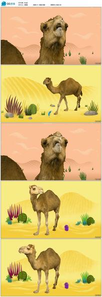 卡通娱乐骆驼视频素材
