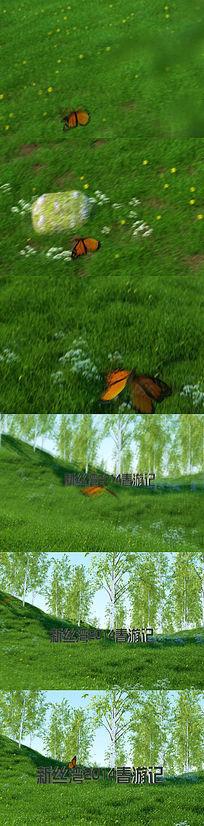 绿草地蝴蝶飞舞出现片头标题字的ae素材
