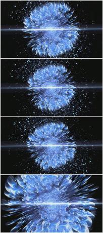 蓝色妖姬震撼花瓣视频背景