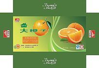 绿色橙子包装盒模板