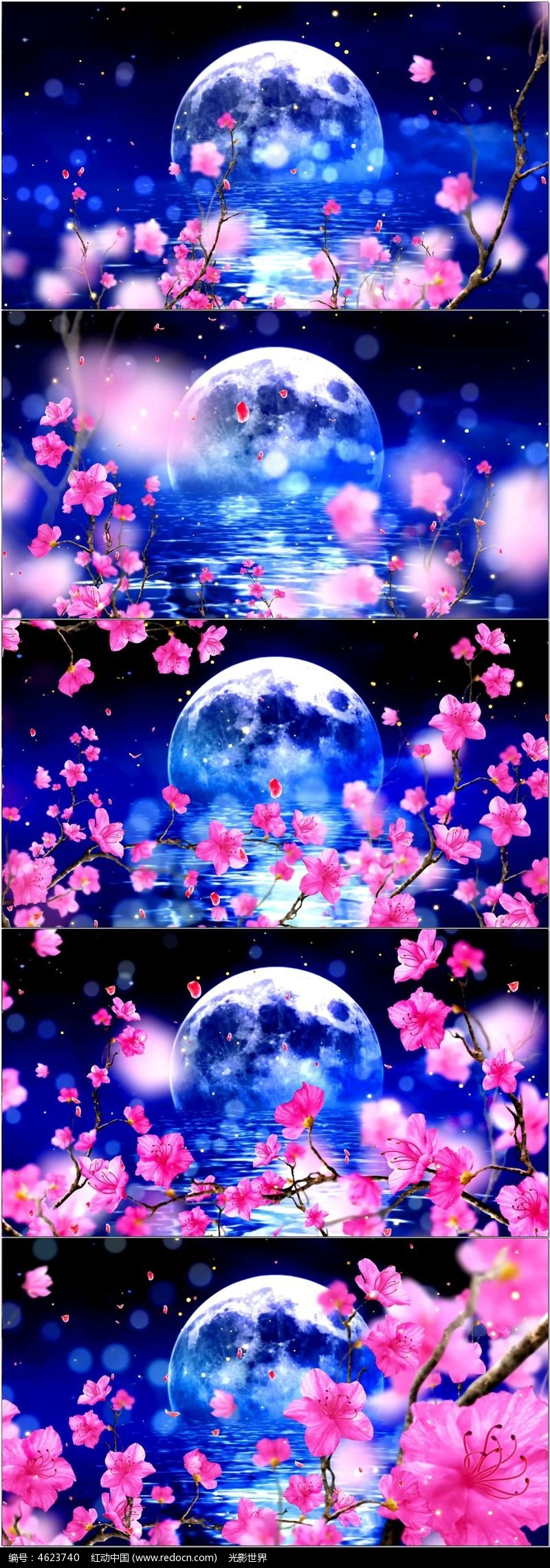 桃花林 星空 月亮