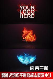 震撼火焰粒子燃烧标志展示片头视频