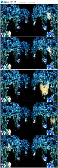 梦幻仙境树林精灵视频素材
