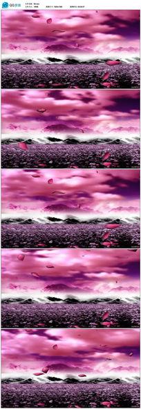 唯美花瓣飘落LED视频视频素材