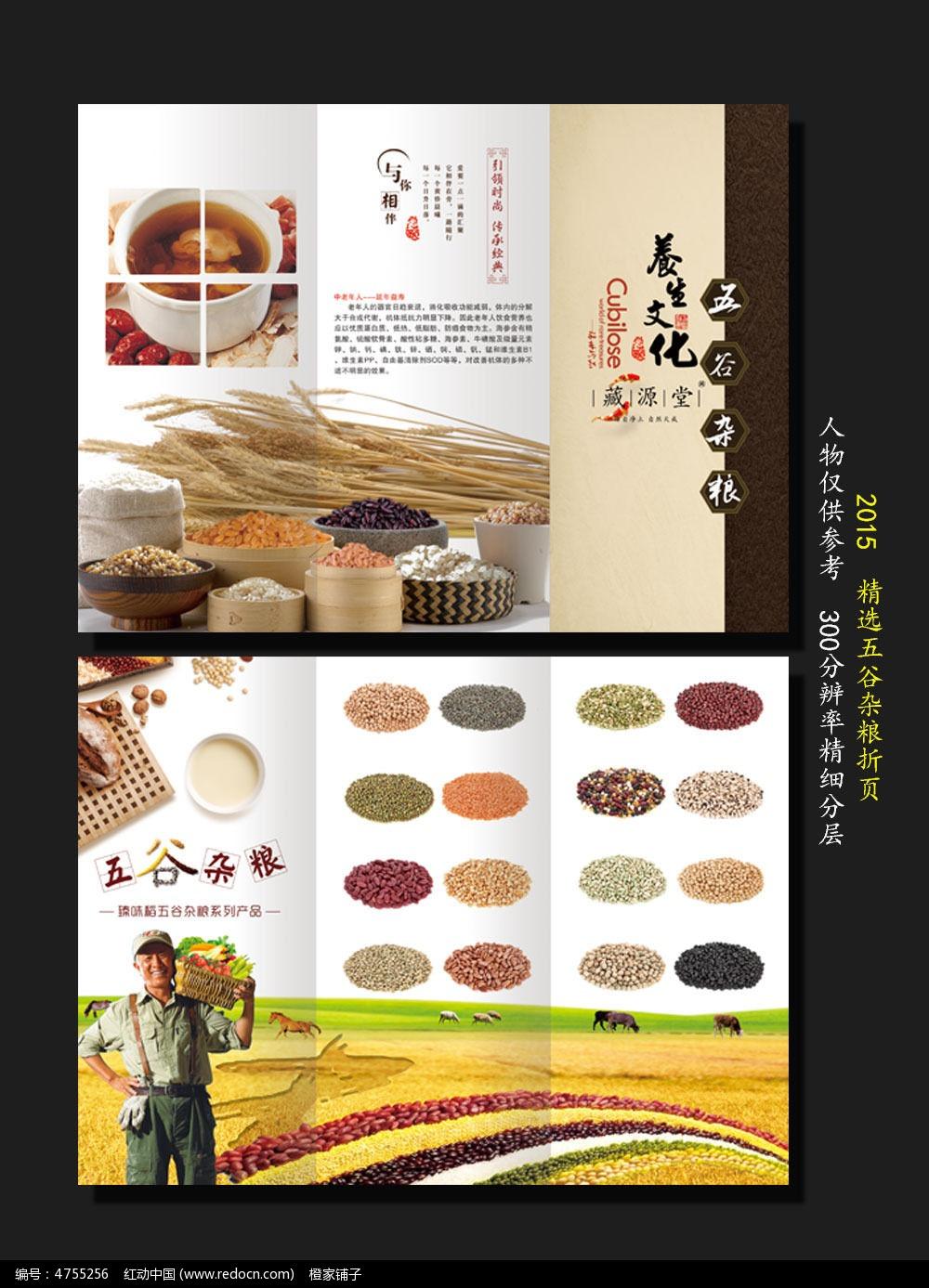 原创设计稿 海报设计/宣传单/广告牌 折页设计 简约五谷杂粮三折页图片