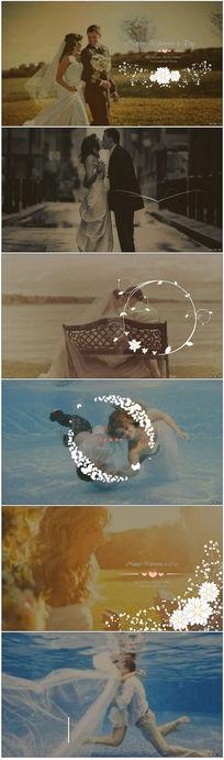 美丽清新的白色花纹装饰婚纱标题展示婚礼电子相册会声会影