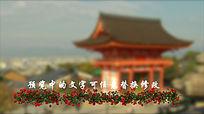 玫瑰花婚礼字幕视频ae模板 aep