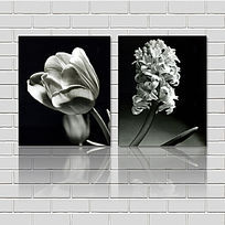 黑白花朵特写装饰画