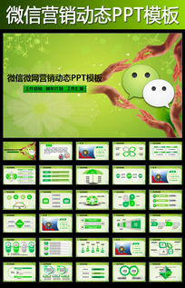 绿色微信微网营销业绩报告动态PPT模板