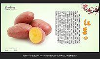 蔬菜展板设计红薯海报招贴广告设计