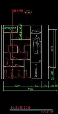 走入式衣柜d立面图