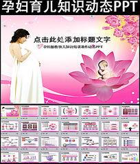 孕妇育儿知识培训讲座胎教ppt模板 pptx