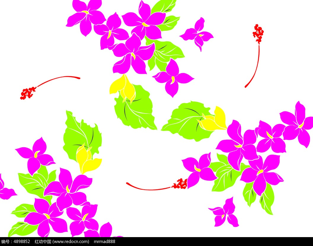 手绘花 花卉 植物花卉