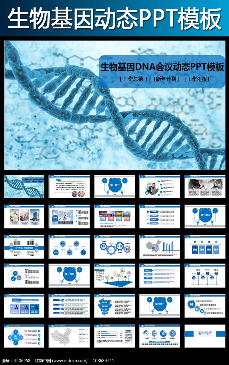 dna基因生物ppt模板