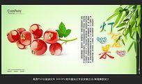 清新唯美水果店灯笼果海报招贴广告设计