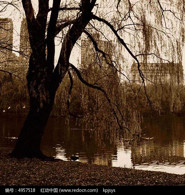 欧式古典风格湖面装饰画设计图片