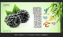 清新唯美水果店黑加仑海报招贴广告设计