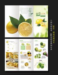 简洁柠檬宣传折页设计