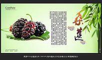 时尚大气水果店桑葚展板设计