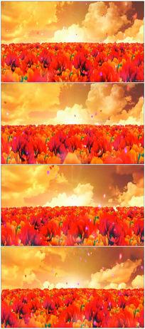 漫山遍野的郁金香晚会背景LED高清视频