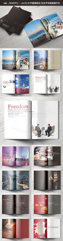 CDB中心房地产商务画册设计