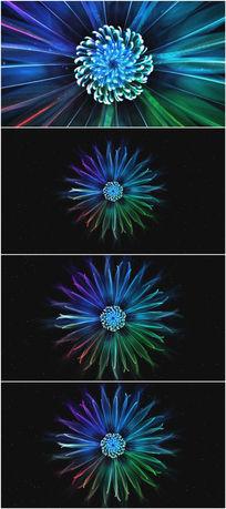 2k超清花朵绽放花蕊特效舞蹈视频素材