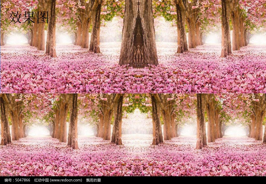 樱花林动态视频背景