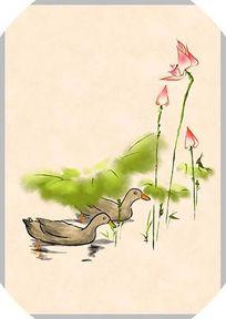 荷花鸭子中国风原创手绘商业插画 PSD