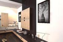 室内装修设计柜子3D效果模型