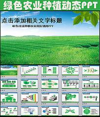 绿色农业种植科技粮食作物生产PPT模板