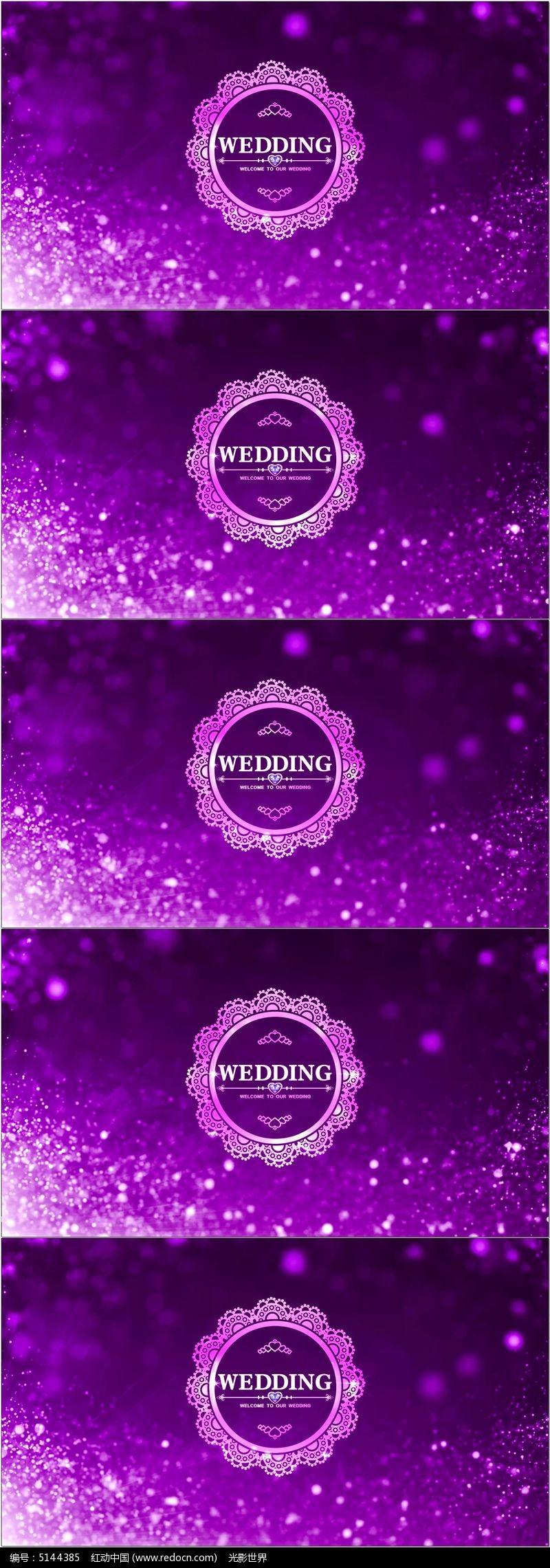 唯美粒子婚礼logo欧式花纹led舞台视频素材图片